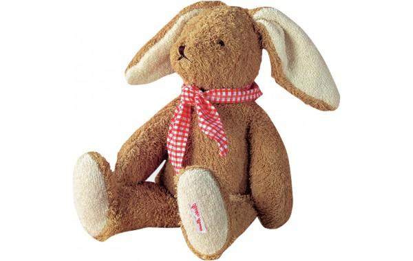 Floppy Peter Rabbit